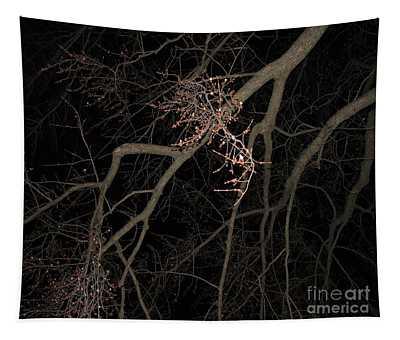 Chilling Night Tapestry