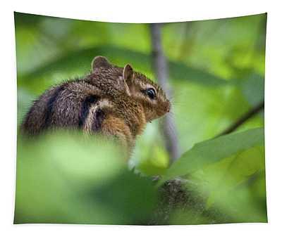 Chipmunk Tapestry