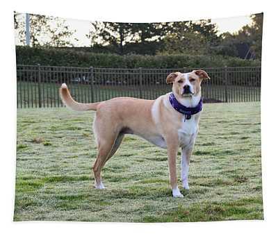 Chloe At The Dog Park Tapestry