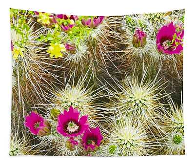 Cholla Cactus Blooms Tapestry