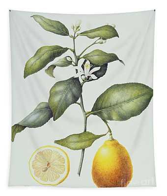 Citrus Lemon Tapestry