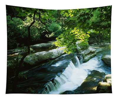Clare Glens, Co Clare, Ireland Tapestry