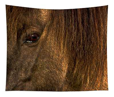 Closeup Of An Icelandic Horse #2 Tapestry
