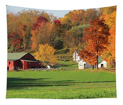 Clothesline Out Amish Farm 5828 Tapestry