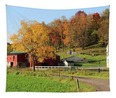 Clothesline Out On Amish Farm 5833  Tapestry