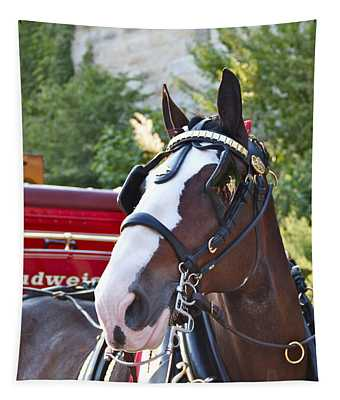 Clydesdale At Esp Tapestry