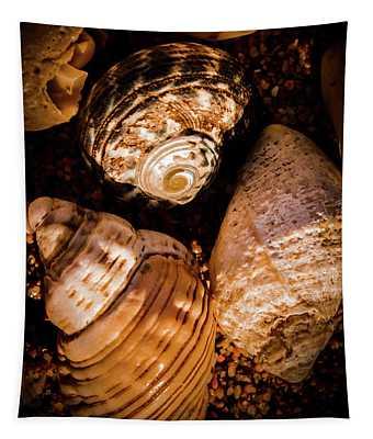 Coastline Shells, Marine Still Life Art Tapestry