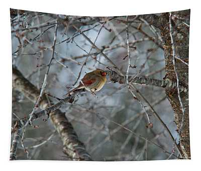 Cold Female Red Bird Tapestry