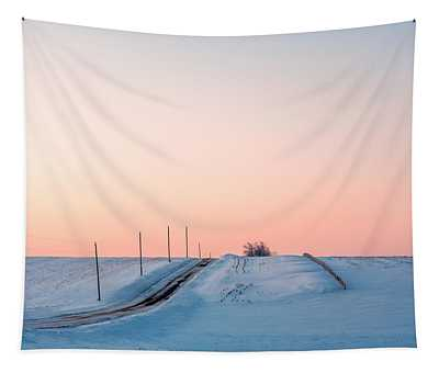 Cold Resolute Tapestry