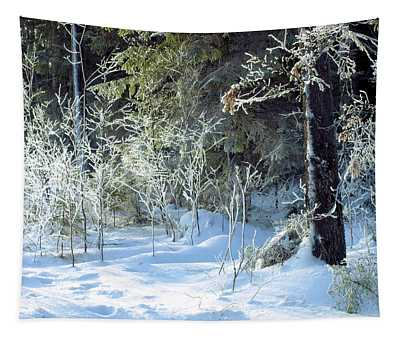 Cold Silence Tapestry
