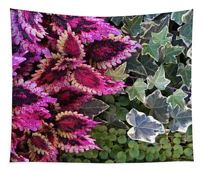 Coleus And Ivy- Photo By Linda Woods Tapestry