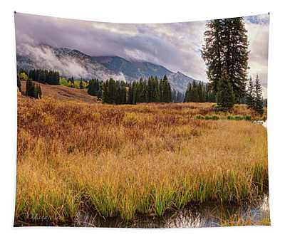Colorado Fall Colors 3  Tapestry