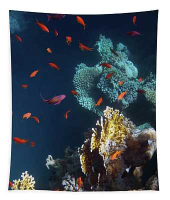 Colorful And Beautiful Sealife Tapestry