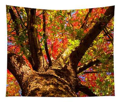 Colorful Autumn Abstract Tapestry