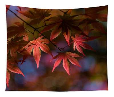 Colorful Japanese Maple Tapestry