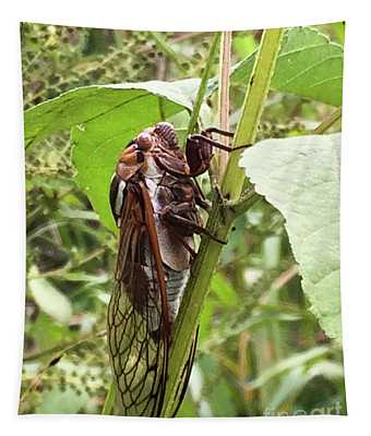 Colorful Summer Cicada Tapestry