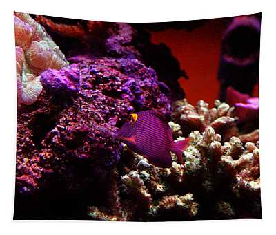 Colors Of Underwater Life Tapestry