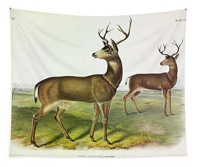 Columbian Black-tailed Deer Tapestry