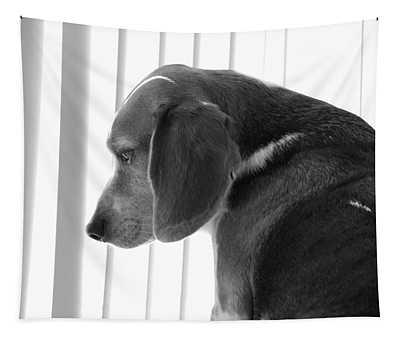 Contemplative Beagle Tapestry