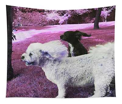 Cool Breeze In Pink Tapestry