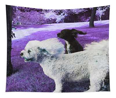 Cool Breeze In Violet Tapestry