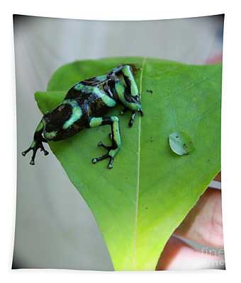 Costa Rican Poison Dart Frog Tapestry