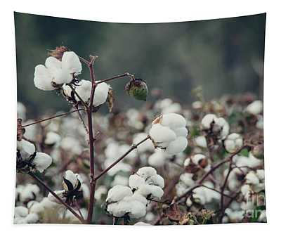 Cotton Field 5 Tapestry