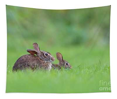 Cottontail Family Tapestry