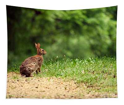 Cottontail Tapestry