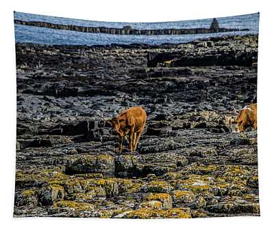 Cows On The Rocks Tapestry