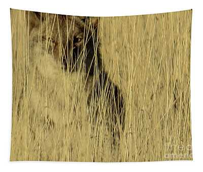 Coyote 3 Tapestry