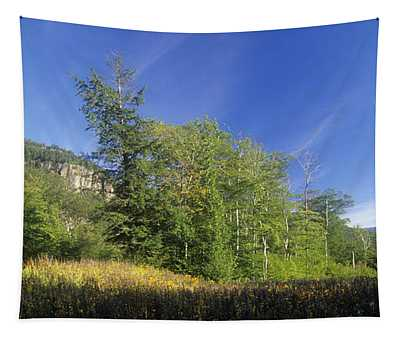 Crawford Notch State Park - Frankenstein Cliff White Mountains Nh Usa Tapestry