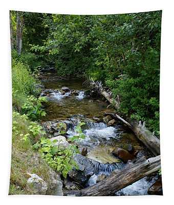 Creek On Mt. Spokane 1 Tapestry
