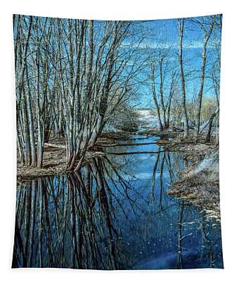 Kitchen Creek Photographs Wall Tapestries