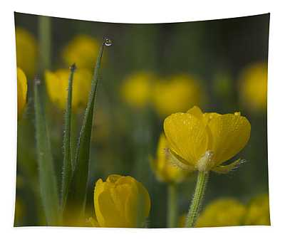 Creeping Buttercup Tapestry