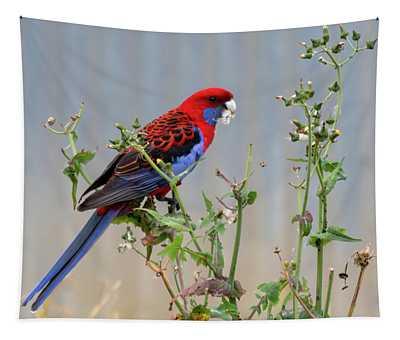 Crimson Rosella Tapestry