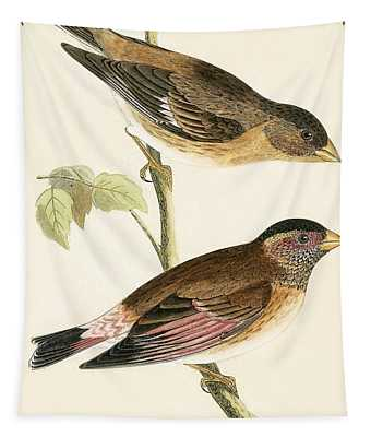 Crimson Winged Grosbeak Tapestry