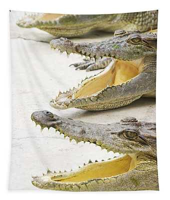Crocodile Choir Tapestry