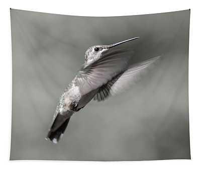 Cumberland Gap Hummingbird Small But Mighty Tapestry