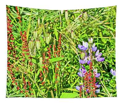 Curly Dock, Sea Oats And Lupine Above Muir Beach In Muir Woods National Monument, California  Tapestry