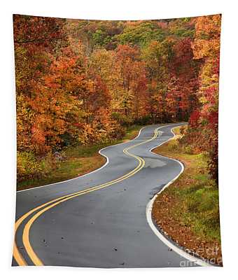 Curvy Road In The Mountains Tapestry