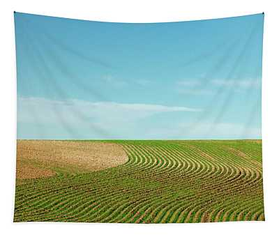 Curvy Rows Tapestry