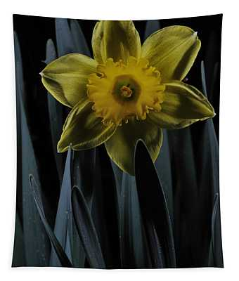Daffodil By Moonlight Tapestry