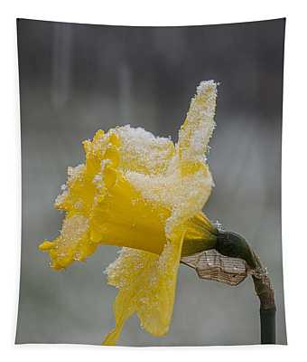 Daffodil In A Snow Storm Tapestry