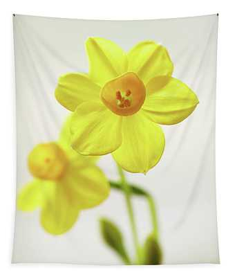 Daffodil Strong Tapestry