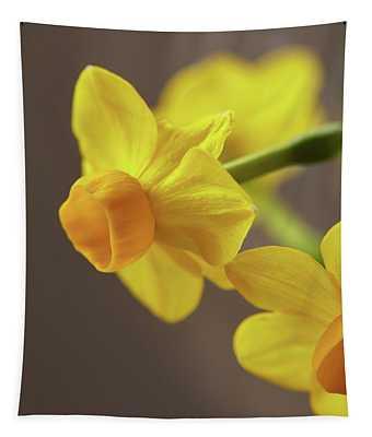 Daffodil Sunrise Tapestry