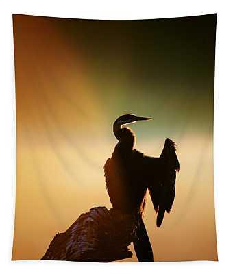 Darter Bird With Misty Sunrise Tapestry