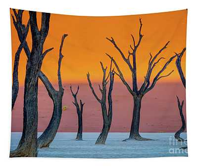 Deadvlei Abstract Tapestry