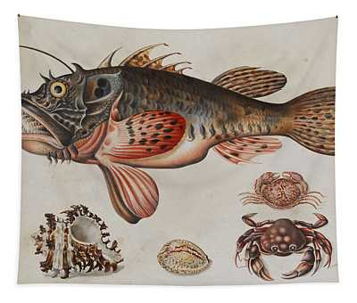 Deep-sea Fish, Crabs And Sea Snails Tapestry