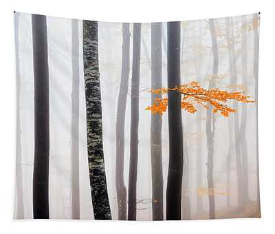 Delicate Forest Tapestry